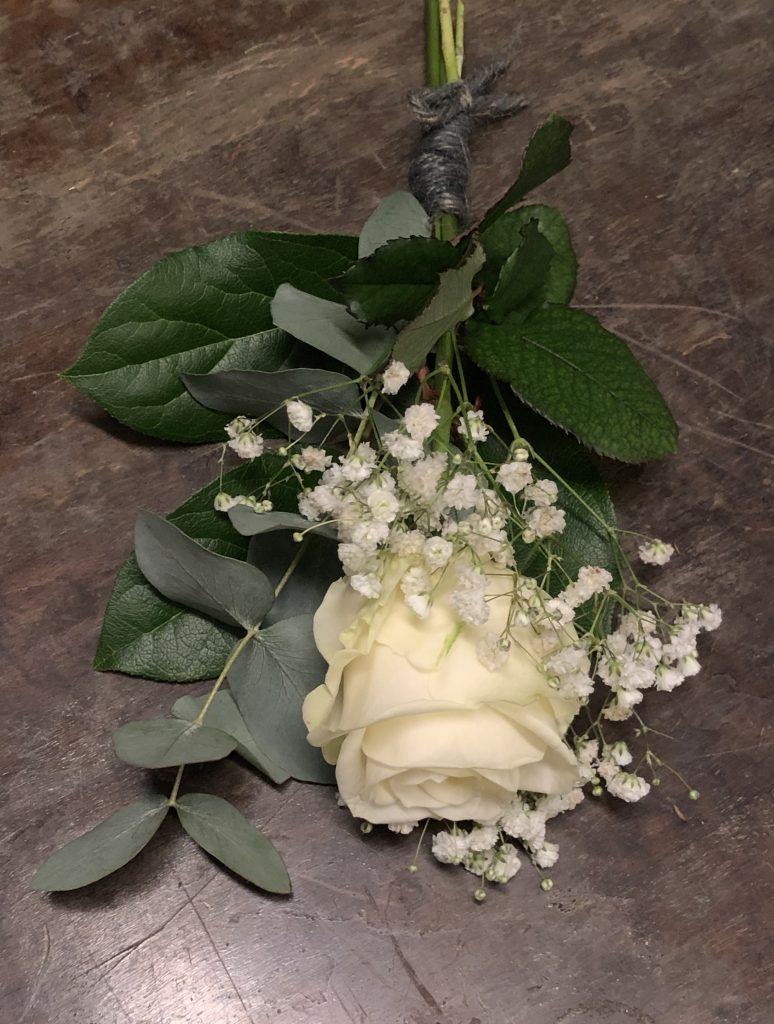 En vit ros med brudslöja.