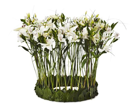 En stående bukett med vita blommor.